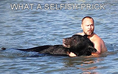 guy saves bear from drowning altruism