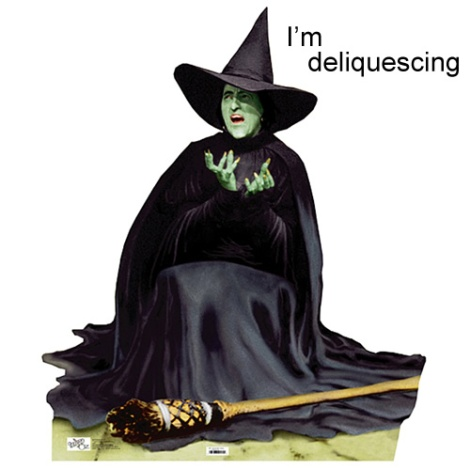 wicked witch of the west wizard of oz dorothy melting