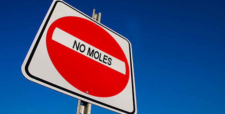 moles-featured